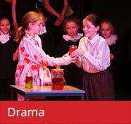 Drama Curriculum The Towers