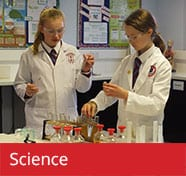 Science Curriculum The Towers