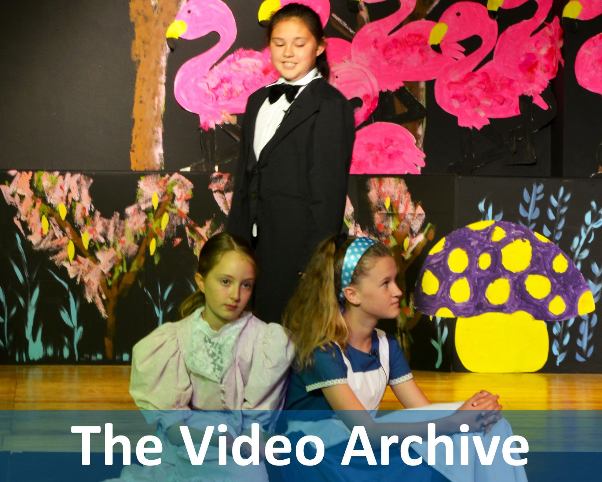 The Video Archive